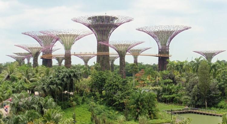Apasionante singapur un mundo interminable for Plantaciones verticales